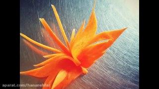 تزیین هویج به شکل پروانه
