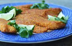 شنسیل ماهی