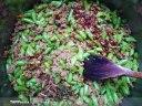استانبولی با گوشت چرخ کرده و لوبیا سبز